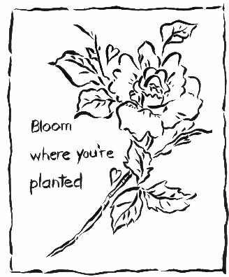 bloomwhere